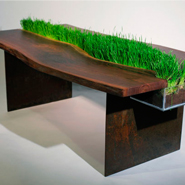 5 Plant-Friendly Furniture Designs