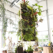 5 Vertical Garden Ideas