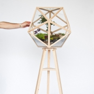 Terrarium for Your Bonsai Trees by Fort Standard