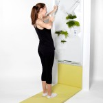 arceas-space-saving-fitness-equipment-6