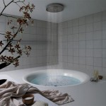 bathroom-design-element-in-floor-bathtub-8
