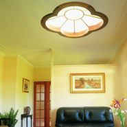 Bright Idea: Ceiling Remodeling Tips