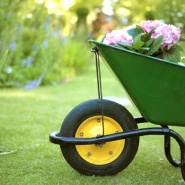 Budget Garden Makeover Tips