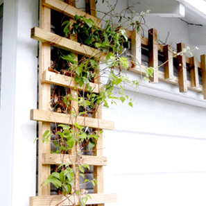 Budget-Wise Garden Accent: Trellis