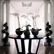 Columns In Interior Design