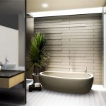 contemporary-bathroom-designs-9