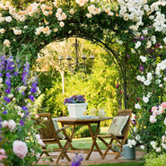 Garden Design Ideas: Arbor