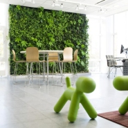 Green Decor: Vertical Garden Ideas