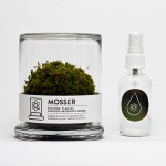 green-solution-mosser-terrarium-2