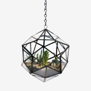Home Gardening: Score+Solder Stylish Planters &#038; Terrariums