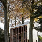 house-bern-heim-beuk-house-built-with-nature-in-mind-3