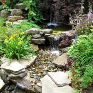 How To Build Rock Garden