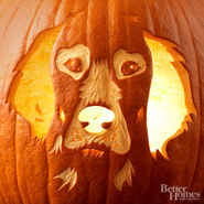How To Create Interesting Jack O&#8217; Lantern