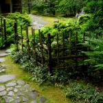 japanese-stroll-garden-path
