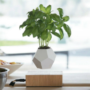 Lyfe Is A Levitating Planter That Rotates