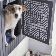 Ideas For Pet-Friendly Interior Design