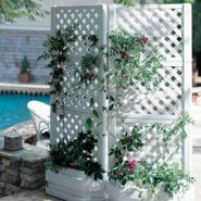 Small Spaced Garden Tips And Ideas