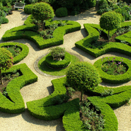Symmetry &#038; Order: Knot Garden