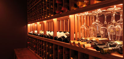 Amazing Wine Cellar Designs